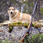 На охоту в одиночку – дело гиблое