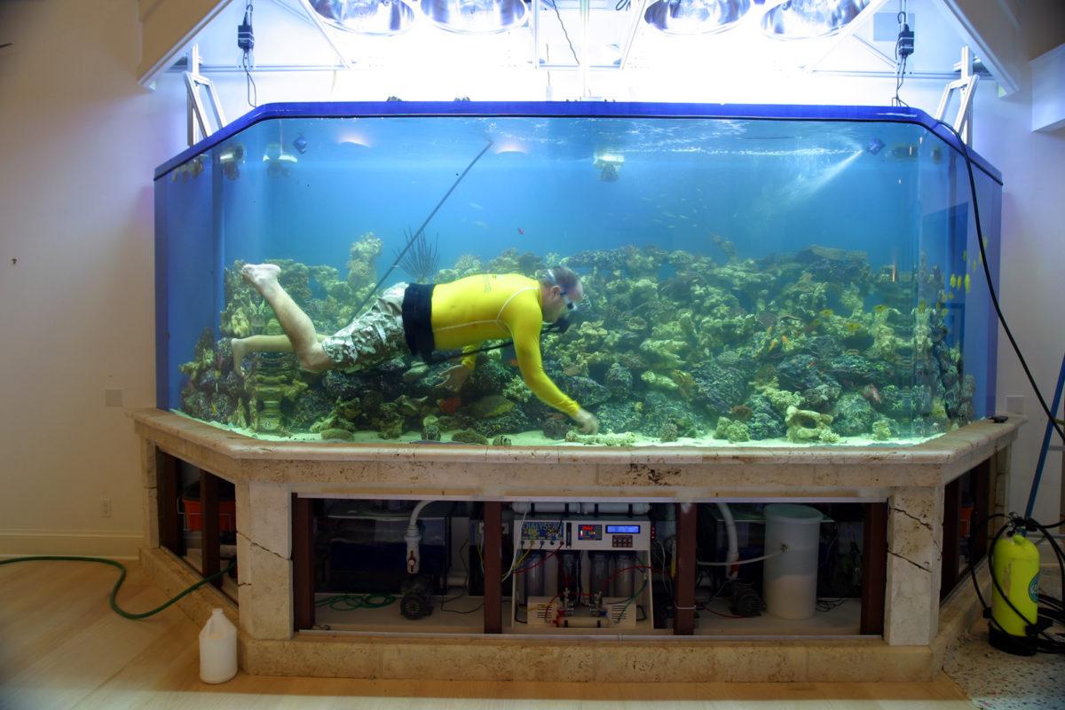 Как оборудовать аквариум своими руками