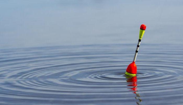 Что учесть при выборе поплавка